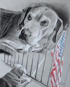 Memories of Banks the Dog