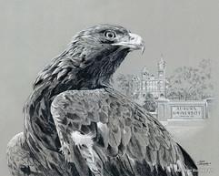 Aubrun Eagle artwork