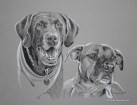 Dog Buddies art