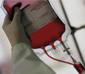 Nuevos Lineamientos para Transfusión Sanguínea