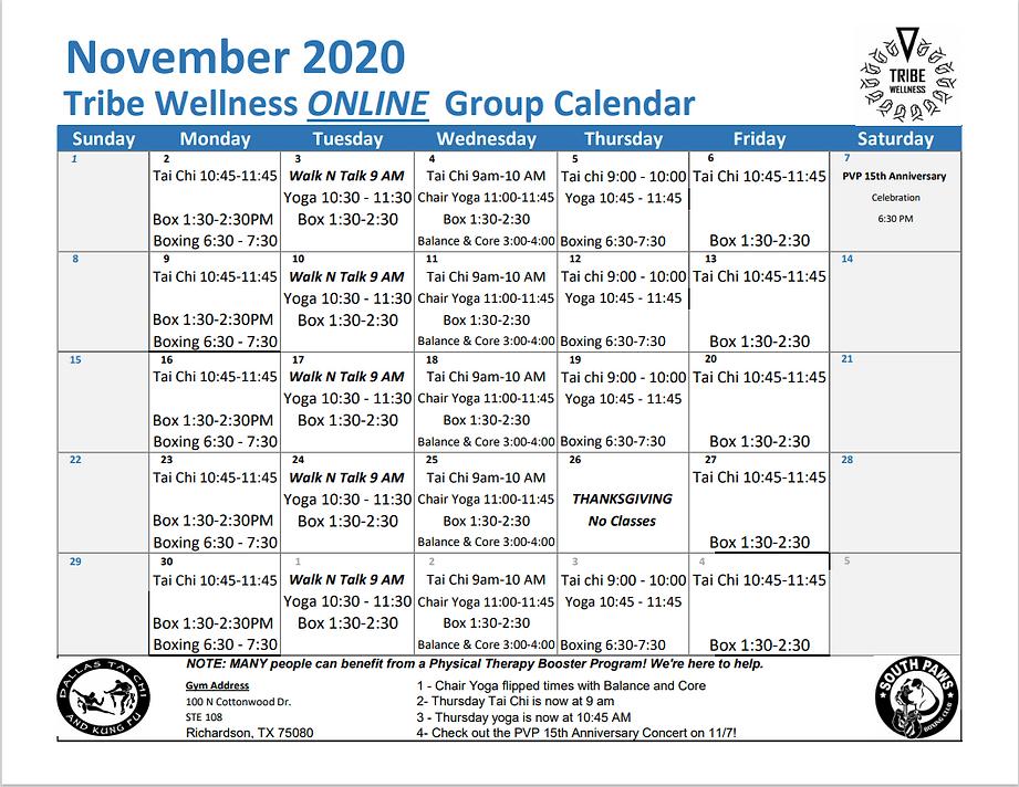 November 2020 Group Calendar.PNG