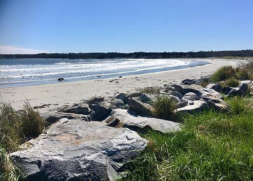 beachpic.jpg