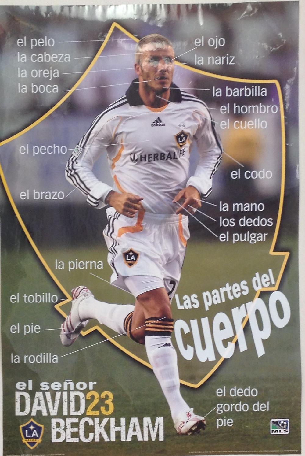 photo of David Beckham poster