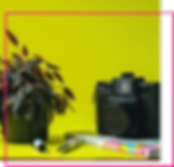 Fotgrafía Corporativa Digital para las redes sociales y página web de Lajui