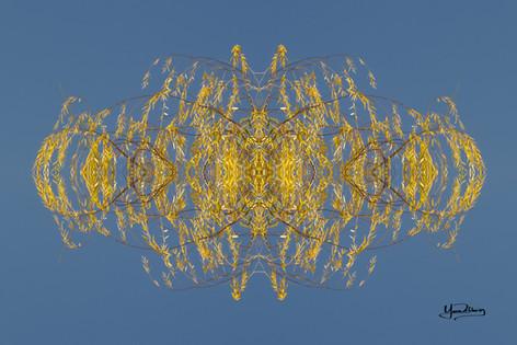 Cristal d'arbre N°42