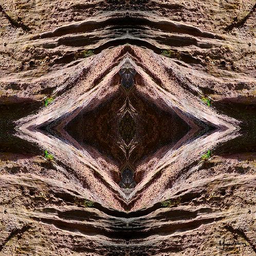 Médit'Terre