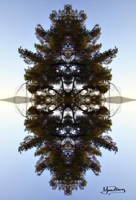 Cristal d'arbre N°2