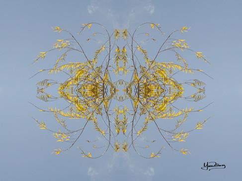 Cristal d'arbre N°39