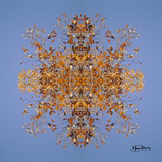 Cristal d'arbre N°26