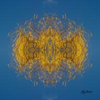 Cristal d'arbre N°33
