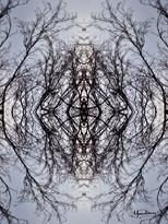 Cristal d'arbre N°22