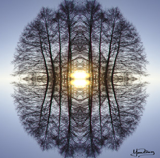 Cristal d'arbre N°3