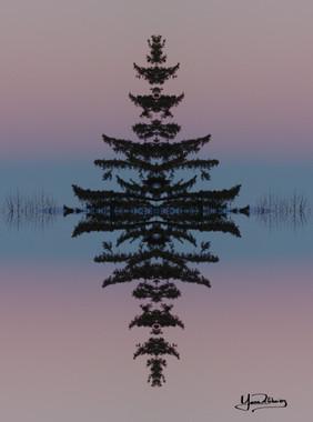 Cristal d'arbre N°5