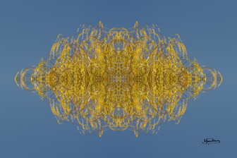Cristal d'arbre N°43