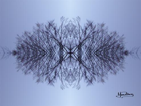 Cristal d'arbre N°15