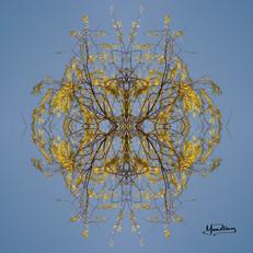 Cristal d'arbre N°40