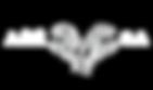 CSA Logo 2 White.png