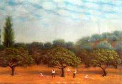Yalçın Gökçebağ 35x50 cm
