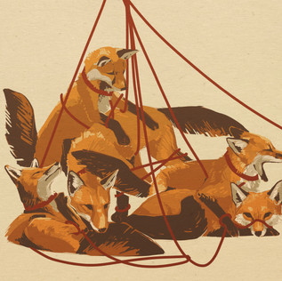 Leash of Foxes