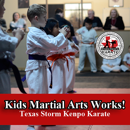 kids martial arts works.png