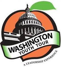 Grady EMC Washington Youth Tour to be held virtually for 2021