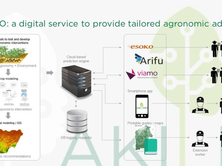 Accessing AKILIMO Tools and Resources