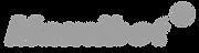 Gray logo.png