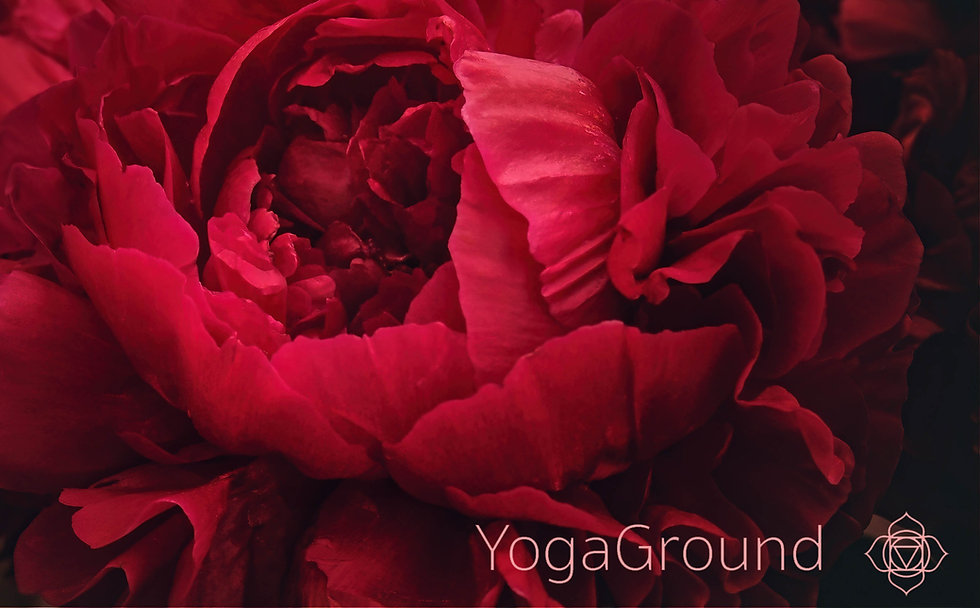 Yogaground-5-3%20large%20central%20flowe