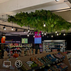 Delhaize: moderne winkelbeleving via audio, video & IT