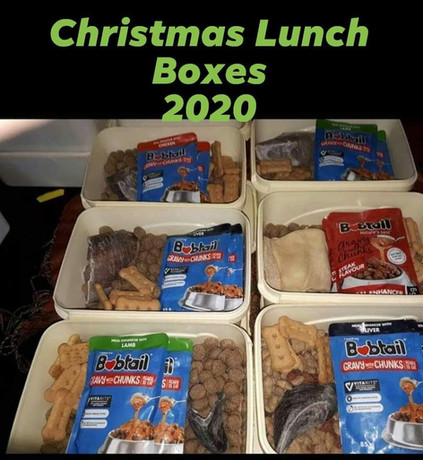 Christmas Lunch Boxes 2020