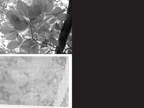 Tree Canopy Railing Pattern