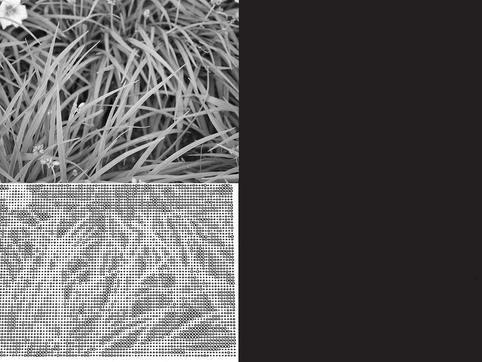 Grass Railing Pattern