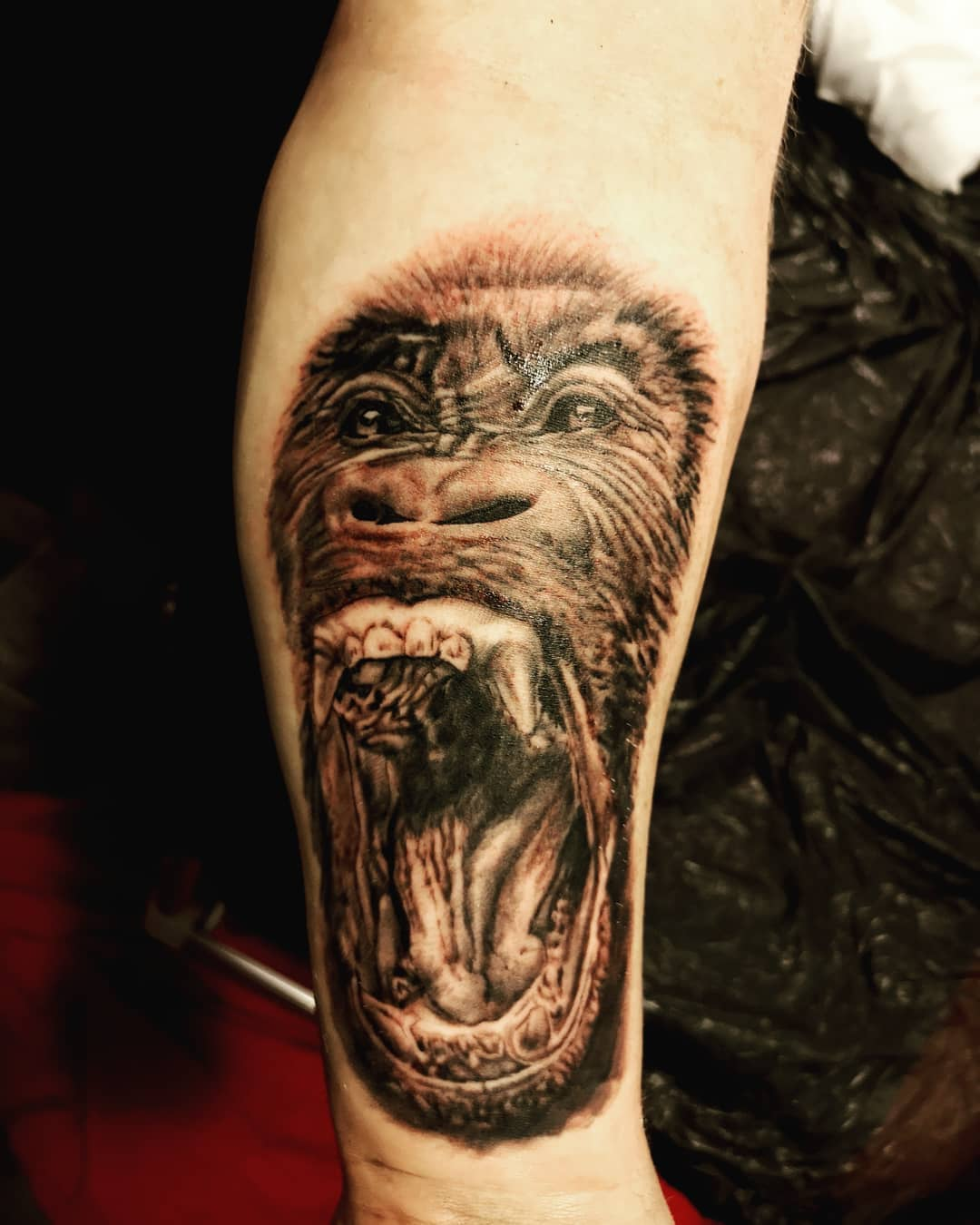 Gorilla on forearm