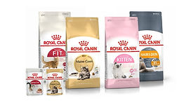 sa-l-royal-canin-feline-health-nutrition