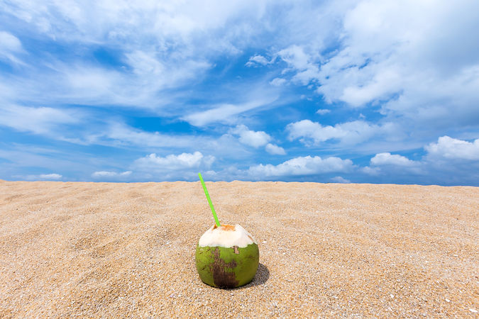Coconut on sand.jpg