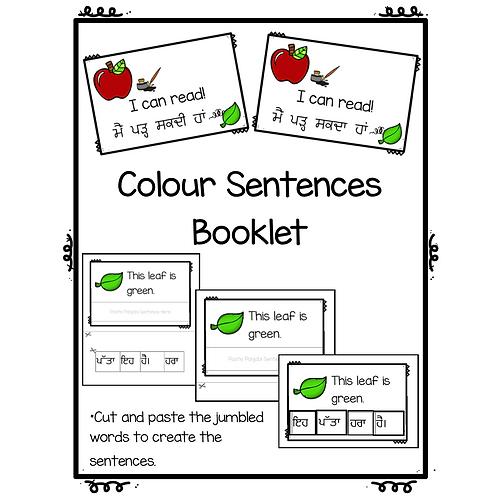 Colour Sentences Booklet