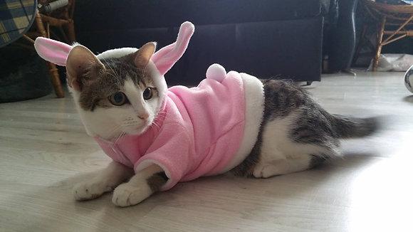 Katzen Kostüm, Hase, h.rose