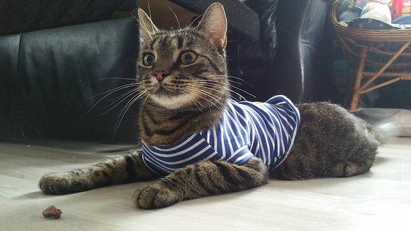 Katzenkleidung, gestreift, blau