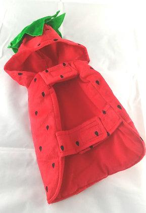 Katzen Kostüm, Erdbeer