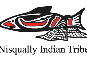 """""""This program can work with any culture or ethnic group."""" Quote from Nisqually Indian Tribe"""