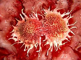 cancer-drugs-that-halt-tumors-can-also-s