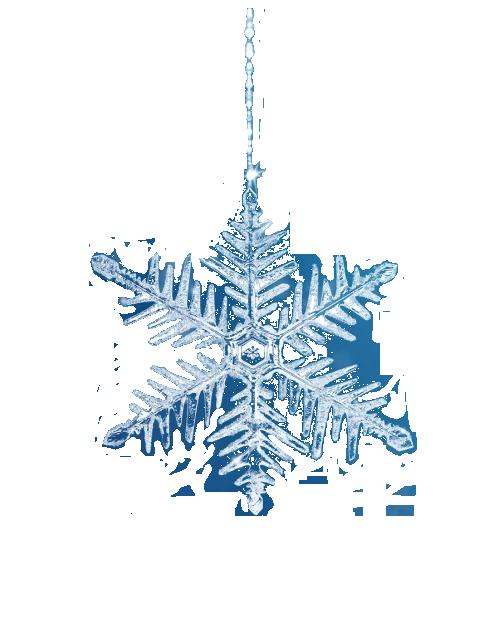 Snežinka.png