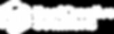 RCS Block Logo White2.png