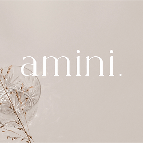amini-01.png