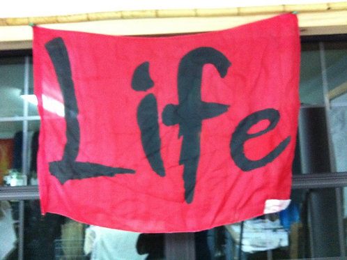 LIFE small banner