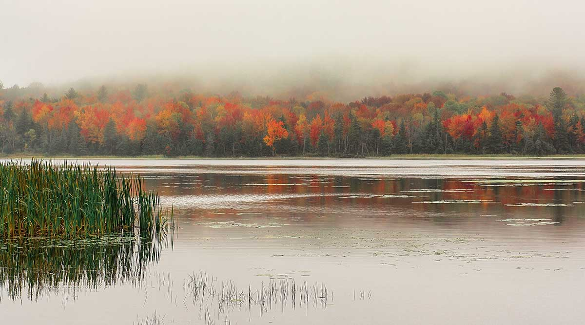 Star Lake Autumn