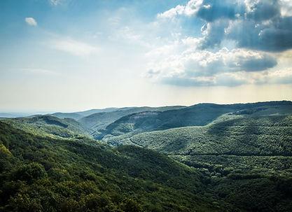 MountainPic.jpg