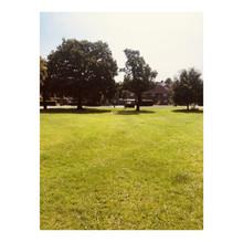 Whitagram-Image (31).JPG