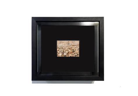 Study for a Solipsism,  Aquarelles réalisées sur papier Arche à l'héroïne, cadre en chêne noir, verre anti-reflets qualité musée.  Dimensions : 34,5 cm x 39 cm, profondeur : 10 cm - Dimension de chaque aquarelle: 21cm x 14,5 cm