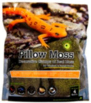 Pillow_Moss_Natural_Dry_4qt_Stand-Up_Pou